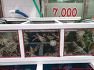 200329, 91좌, 양산 천성산, 숲속1주차장 적멸굴 중앙능선 천성산2봉(비로봉) 천성산(원효봉) 화엄늪 내원사 - 아내와 함께