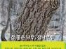 우리나라 숲의 대표나무! 소나무와 참나무