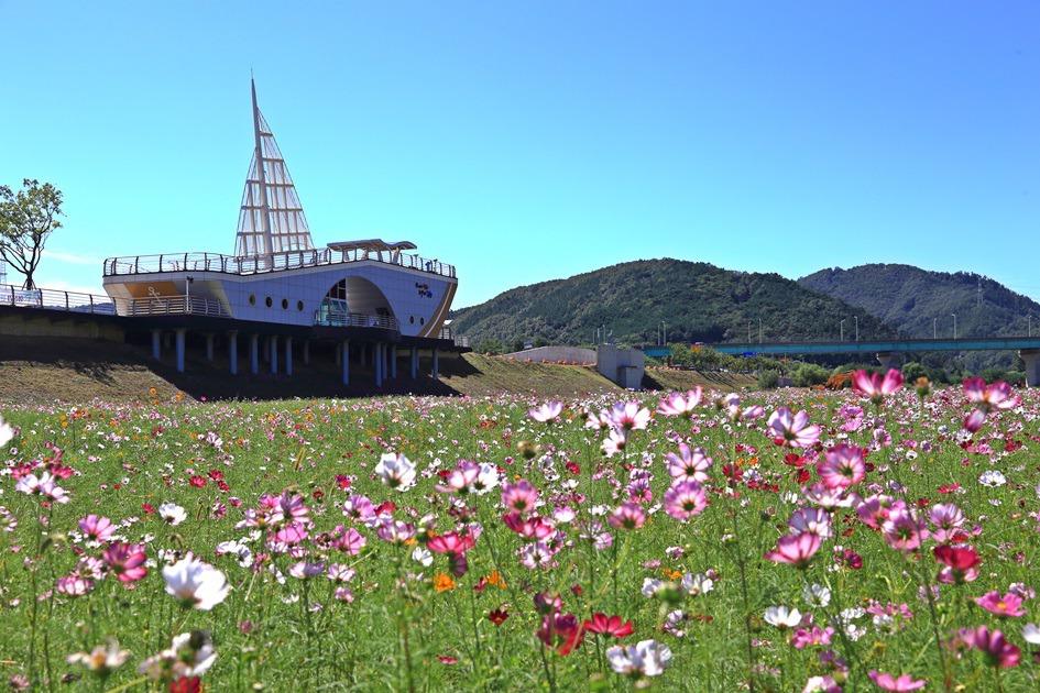 형산강 철새전망대