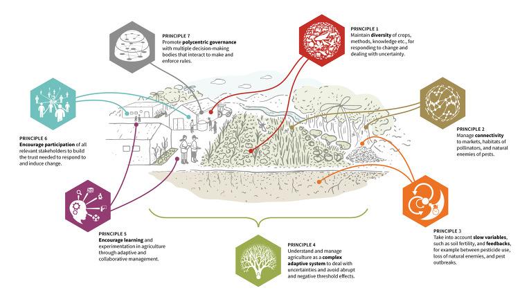 농생태학에 대한 이미지 검색결과